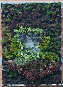 """El jardín vertical """"Chilito: un jardín hecho memoria"""" fue realizado el año pasado por el dúo artístico """"Magdalenas por el Cauca"""" (Gabriel Posada y Yorlady Ruiz López) junto con el ingeniero forestal Martín Camilo Pérez y los familiares de las víctimas de la masacre."""